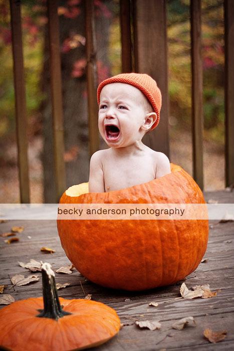 Renzi in a Pumpkin