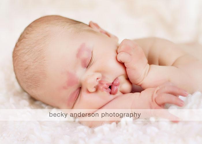 Mystic newborn photographer