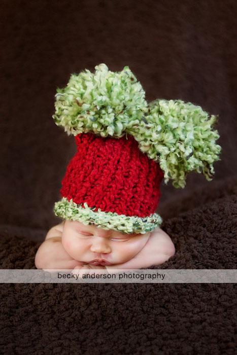 Christmas newborn photographer