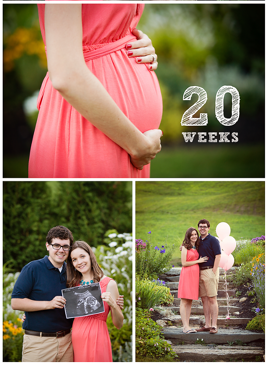 maternity photos and gender reveal pictures Kalamazoo